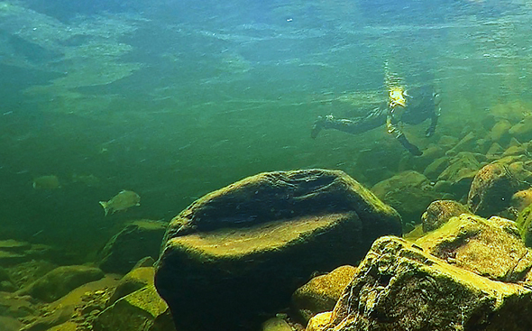 sousleau-underwater590